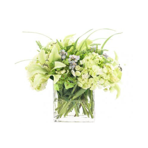 NDI  Lily Hydrangea Green | Glass Cube | PREORDER FOR LATE JULY