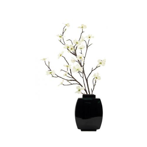NDI  Dogwood Branch Cream Green | Ceramic Black