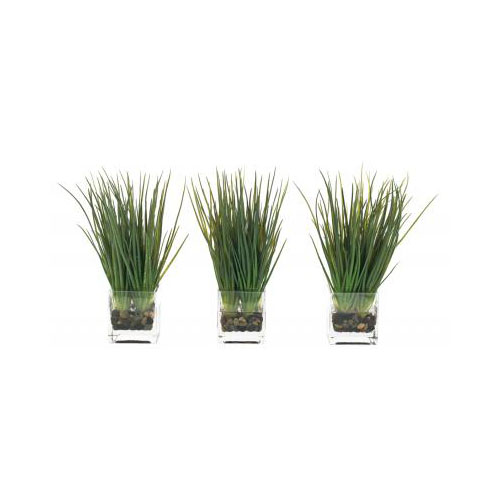 NDI  Grass Rockbed | Glass Cube | Set of Three