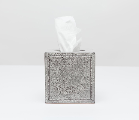 Pigeon & Poodle  FINLEY TISSUE BOX