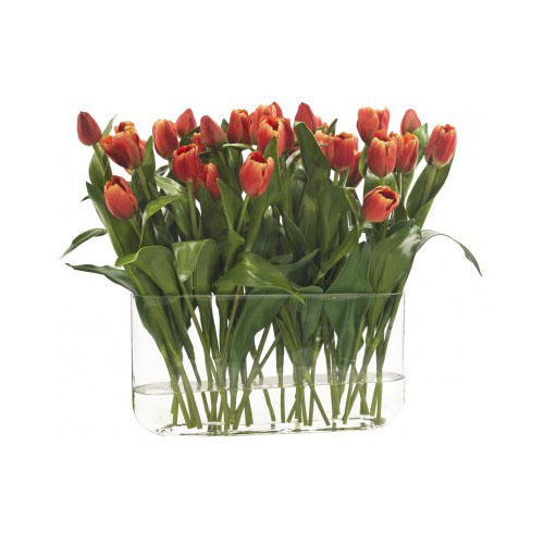 NDI  Tulip | Glass Oval | Red Orange
