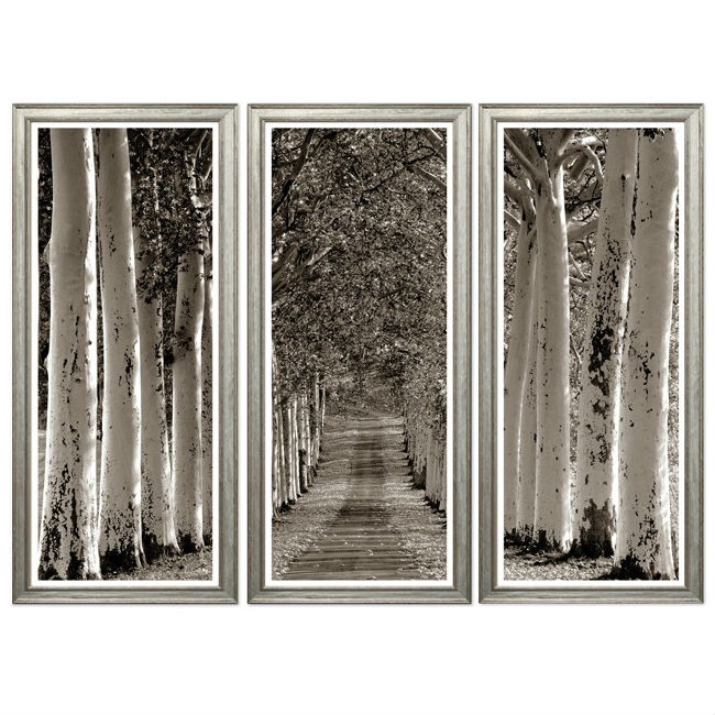 the_avenue_of_trees_wall_pictures_1